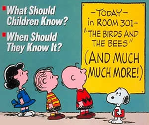 Image result for sex ed in 1980s